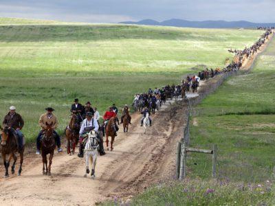 Centenas de romeiros a caminho de Viana do Alentejo: Romaria a Cavalo parte da Moita no dia 26 de Abril