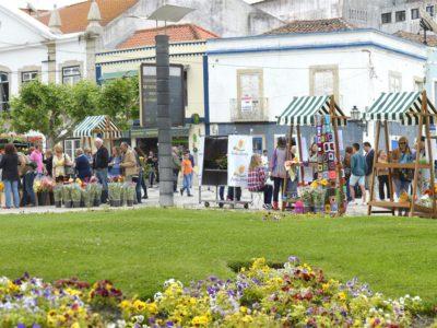 """Programa """"Montijo Lugar de Encontros"""":  Festa da Flor invade centro histórico"""